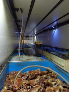 Recrutement: Employé de production agroalimentaire - CDI F/H chez Emeraude RH à Saint-Malo