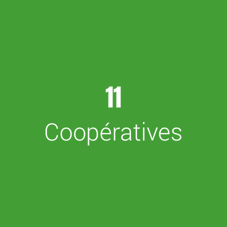 cooperatives2.png