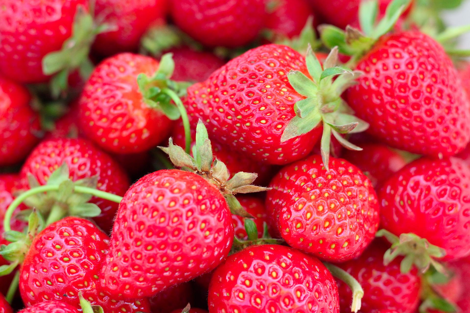 berries-close-up-colors-1125122.jpg