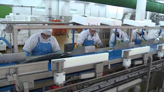 Recrutement: opérateur(trice) de production week-end F/H chez Tisserent Groupement d'Employeurs à Loudéac