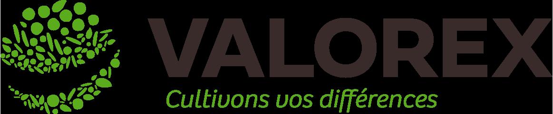 Logo Valorex
