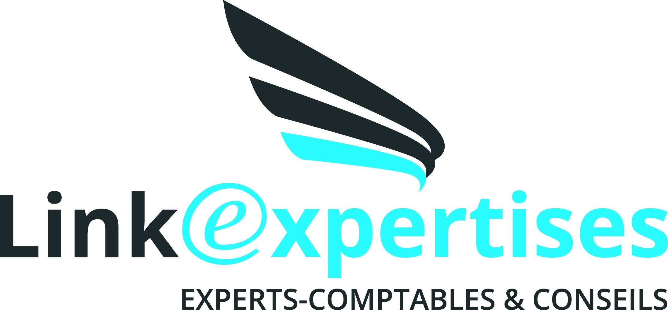 Logo Linkexpertises