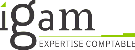Logo Igam