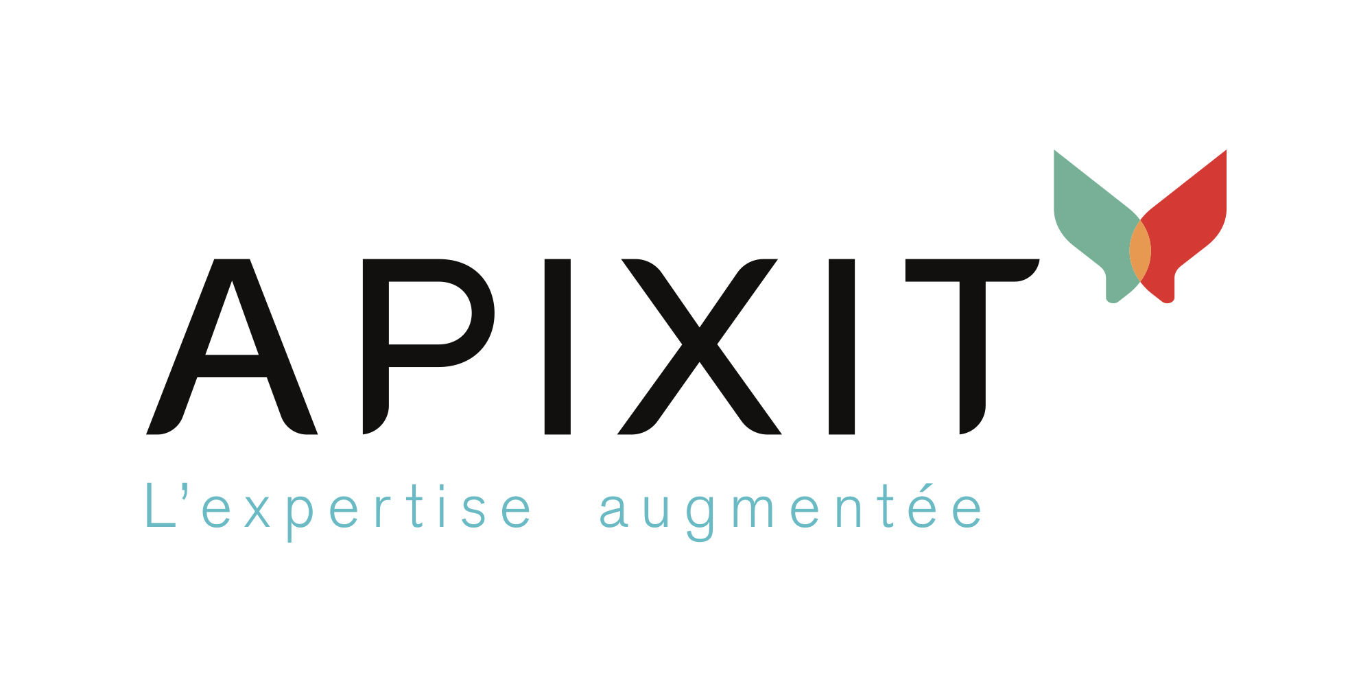 Logo Apixit